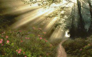 Пророк и дорога. Мусульманам-туристам на заметку