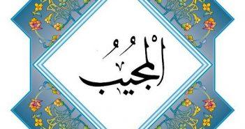 Аль-Муджиб