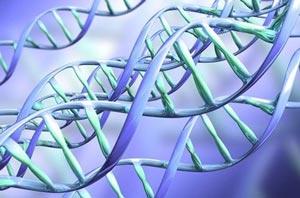 ген пьянства