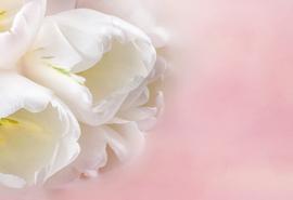Как сохранить райский аромат души...