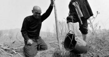 В Китае два друга-инвалида посадили 10 тысяч деревьев