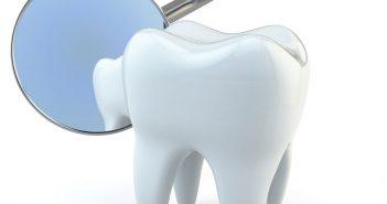 Японские ученые научились выращивать зубы