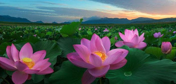 Индонезия – рай для мусульман